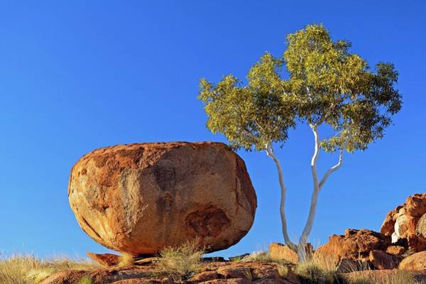Geographical Wall Art - Photograph - Devil's Marbles by Bildagentur-online/mcphoto-schulz