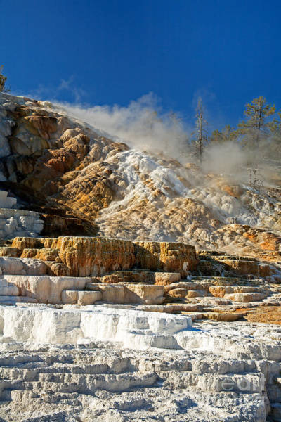 Photograph - Devils Thumb At Mammoth Hot Springs by Fred Stearns