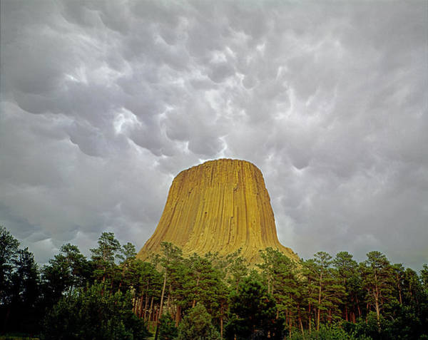 Photograph - Devil's Tower Storm by Ed  Cooper Photography