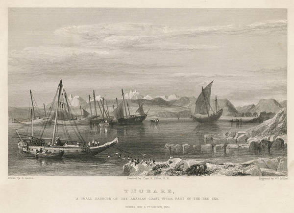 Wall Art - Drawing - Dhows In The Harbour, Dubai (formerly by Mary Evans Picture Library