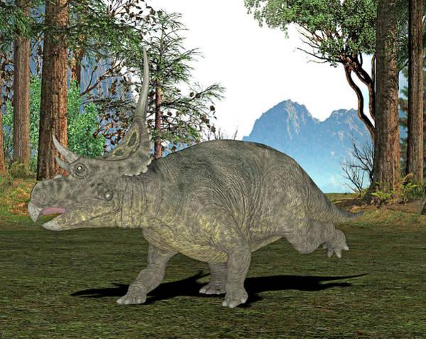 Paleozoology Wall Art - Photograph - Diabloceratops Dinosaur by Friedrich Saurer