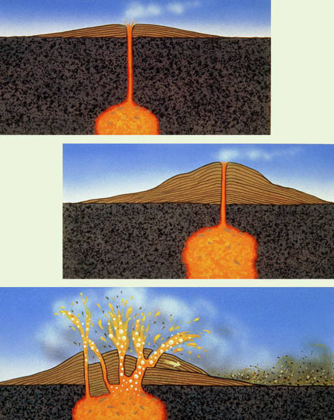Evolution Photograph - Diagram Showing Explosive Evolution Of Volcano by David Hardy/science Photo Library