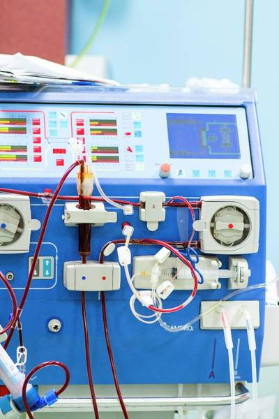 Condition Photograph - Dialysis Machine by Life In View
