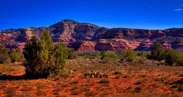 Photograph - Diamondback Gulch In Sedona Arizona by David Patterson
