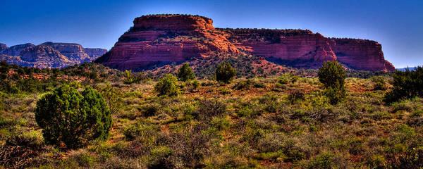 Photograph - Diamondback Gulch Near Sedona Arizona V by David Patterson