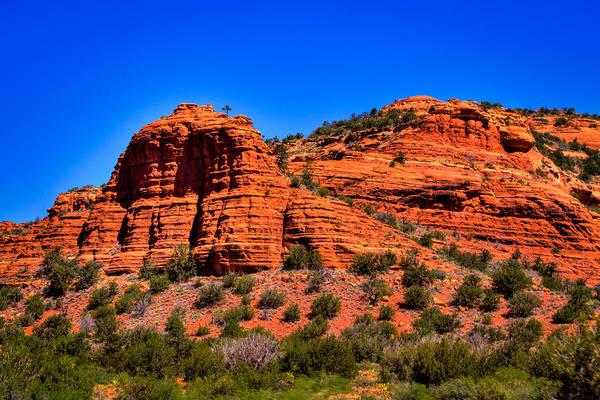 Photograph - Diamondback Gulch Near Sedona Arizona Vi by David Patterson