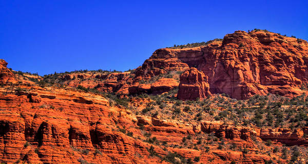 Photograph - Diamondback Gulch Near Sedona Arizona Vii by David Patterson