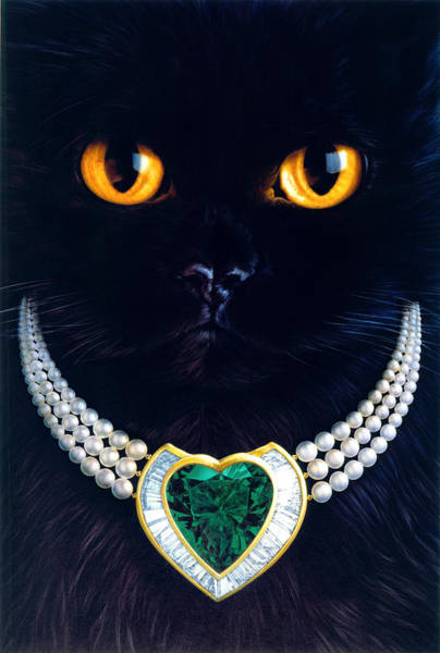 Andrew Farley Photograph - Diamonds Are A Cats Best Friend by MGL Meiklejohn Graphics Licensing