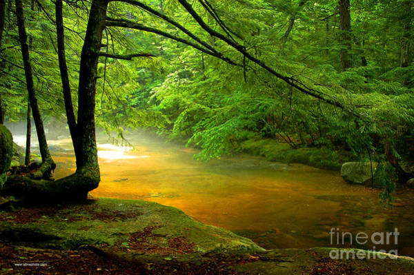 Photograph - Diana's Bath Stream by Alana Ranney