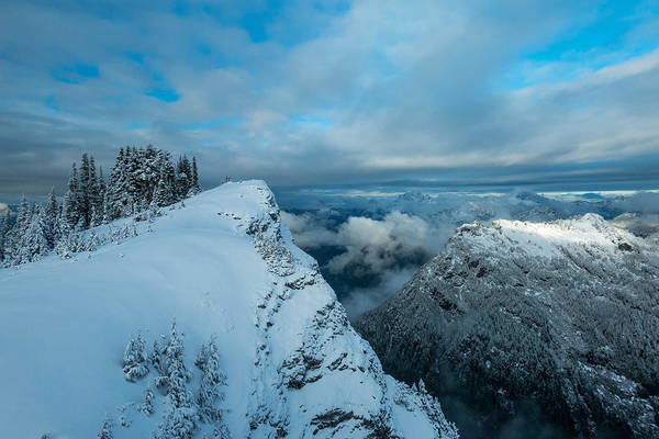 Treeline Photograph - Dickerman Peak by Ryan McGinnis