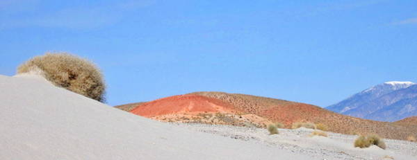 Bishop Hill Photograph - Different Desert by Marilyn Diaz