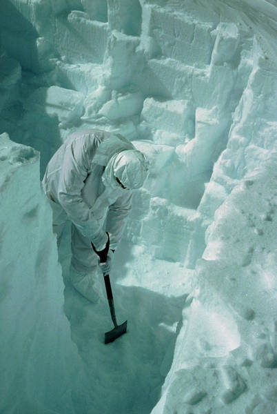 Coring Photograph - Digging Snow Pit Prior To Taking Samples by E.w. Wolff/science Photo Library
