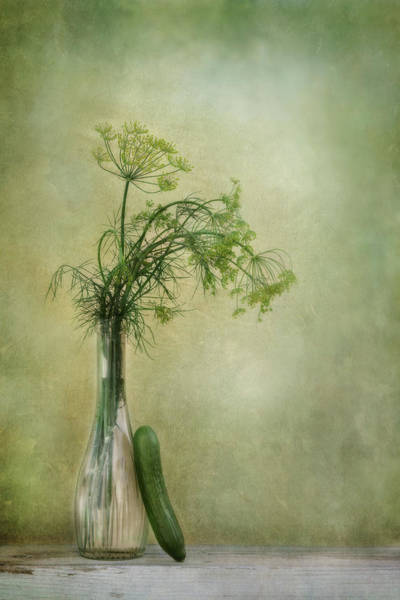 Green Vegetable Photograph - Dill And Cucumber by Priska Wettstein