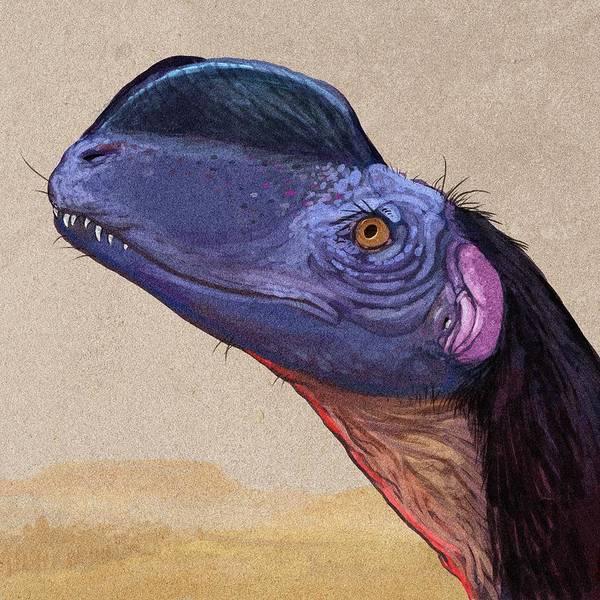 Wall Art - Photograph - Dilophosaurus Sinensis Dinosaur by Nemo Ramjet/science Photo Library