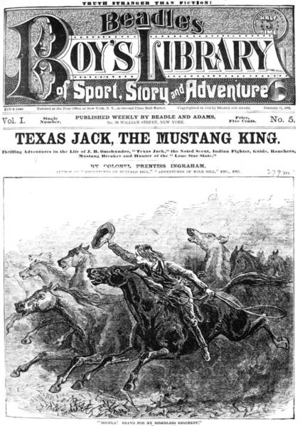 Drawing - Dime Novel, 1882 by Granger