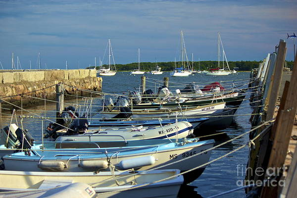 Photograph - Dingy's Of Mattapoisett  by Amazing Jules
