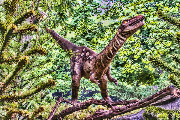 Photograph - Dino In The Bronx One by Alice Gipson