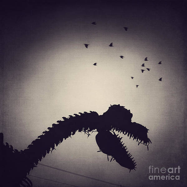 Wall Art - Photograph - Dino In The City by Trish Mistric