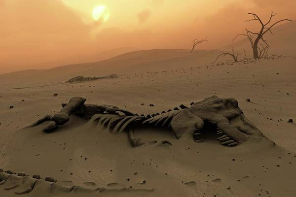 Wall Art - Photograph - Dinosaur Skeletons In The Desert by Mark Garlick/science Photo Library