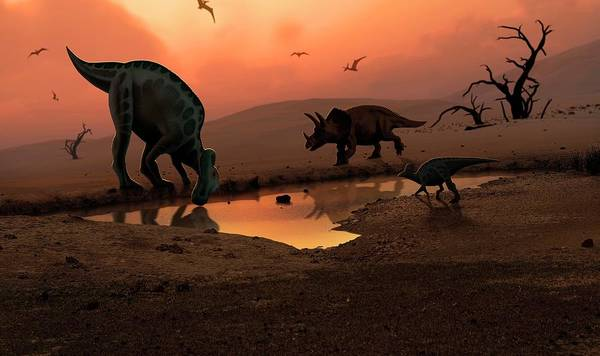 Wall Art - Photograph - Dinosaurs At A Watering Hole by Mark Garlick/science Photo Library