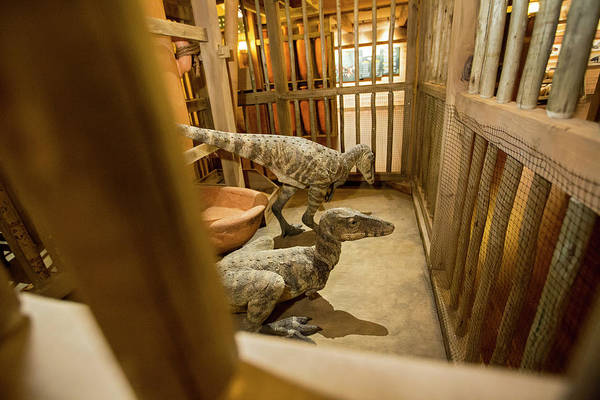 Creationist Wall Art - Photograph - Dinosaurs At The Ark Encounter Creationist Theme Park by Jim West/science Photo Library