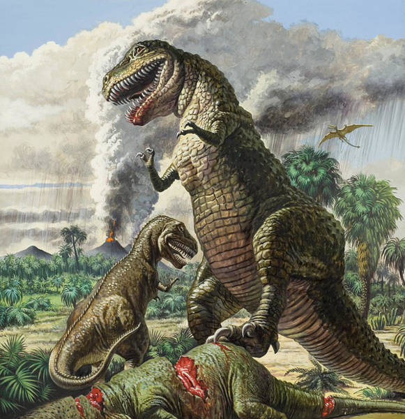 Ashes Drawing - Dinosaurs by Harry Green