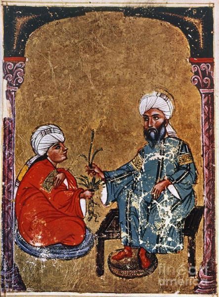 Photograph - Dioscorides And Student by Granger