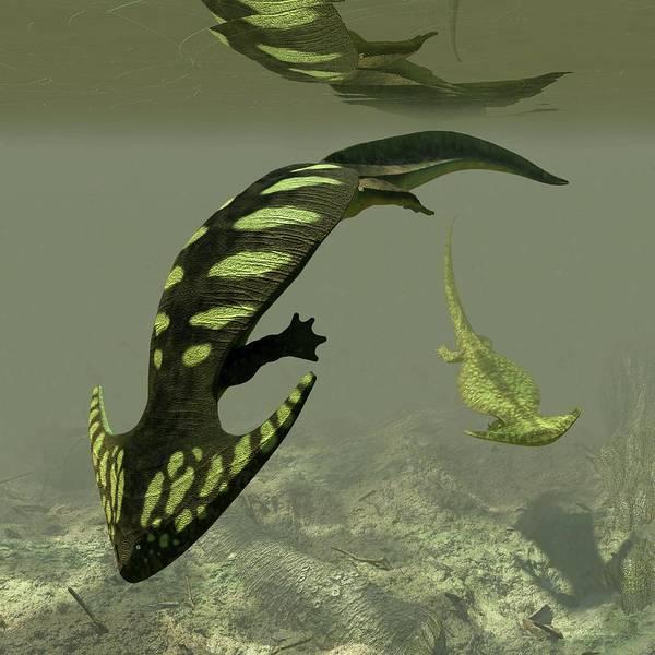 Prehistory Photograph - Diplocaulus Prehistoric Amphibian by Walter Myers