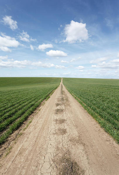 Vertical Perspective Photograph - Dirt Road And Farmland by Adrian Studer