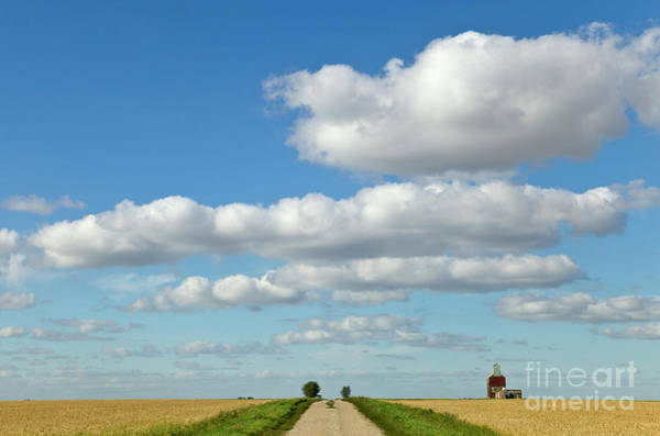 North Dakota Photograph - Dirt Road And Grain Elevator Williston by Yva Momatiuk John Eastcott