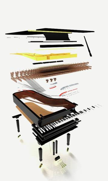 Piano Photograph - Disassembled Parts Of A Grand Piano by Dorling Kindersley/uig