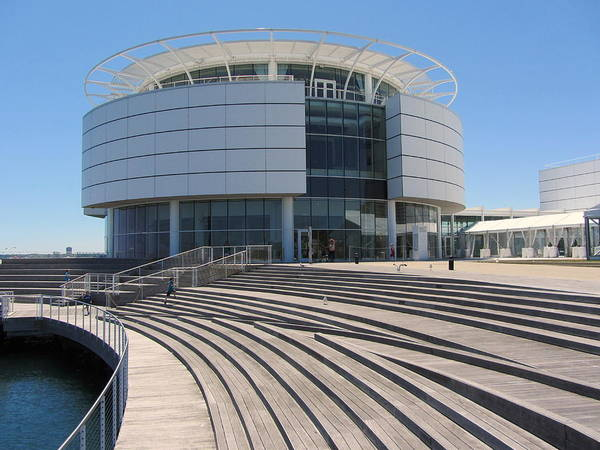 Photograph - Discovery World And Stairs by Anita Burgermeister