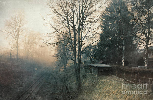Photograph - Distant Light by Jutta Maria Pusl