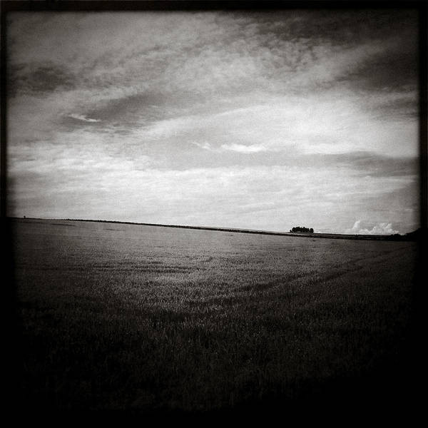 Iphoneography Wall Art - Photograph - Distant Trees by Dave Bowman