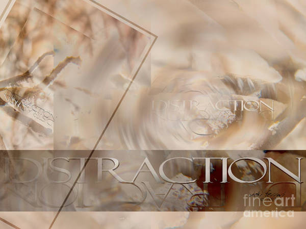 Photograph - Distraction by Vicki Ferrari