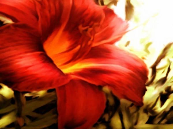 Ditch Flowers Art Print