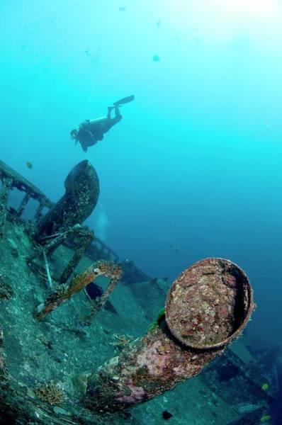 Diver And Wreck Art Print
