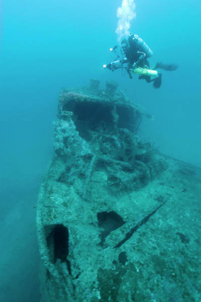Freighter Photograph - Diver At 'northern Light' Shipwreck by Noaa
