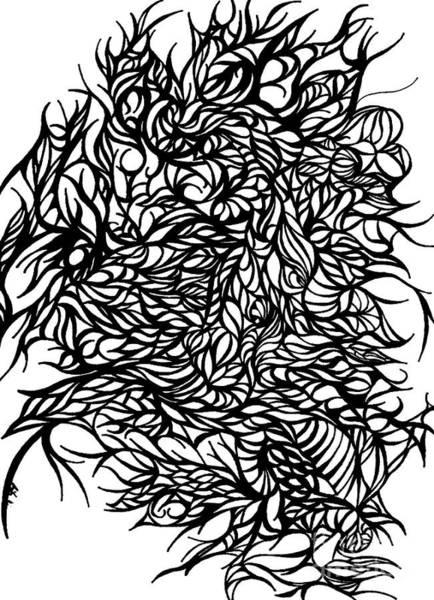 Wall Art - Drawing - Divergant by Jamie Lynn