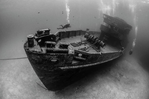 Wall Art - Photograph - Divers Explore The Kittiwake Wreck by Brook Peterson