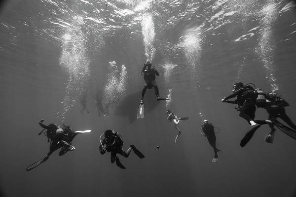 Wall Art - Photograph - Divers Waiting For Their Decomprassion by Alessandro Cere