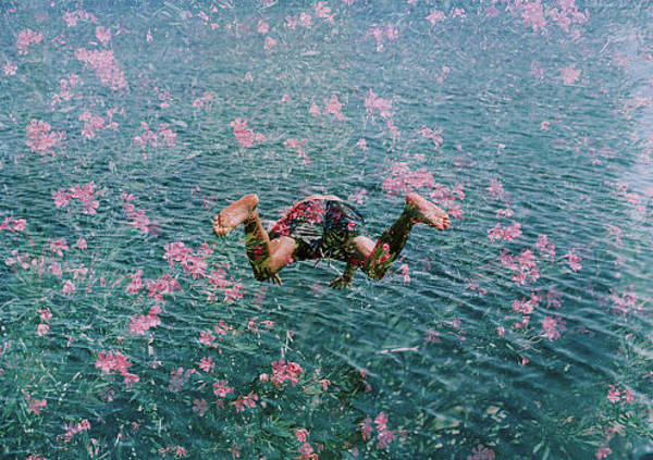 Offbeat Photograph - Diving Into Pink Flowers by Hollie Fernando