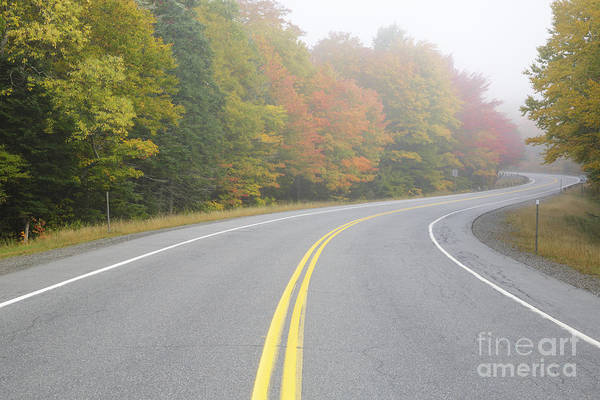 Photograph - Dixville Notch State Park - Dixville New Hampshire Usa by Erin Paul Donovan