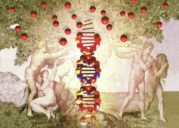 The Creation Of Adam Wall Art - Photograph - Dna As The Tree Of Knowledge by Jean-francois Podevin/science Photo Library