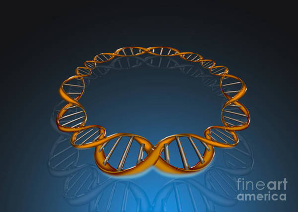 Photograph - Dna Circle by Mike Agliolo