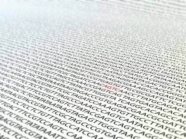 Wall Art - Photograph - Dna Sequence by Andrzej Wojcicki/science Photo Library