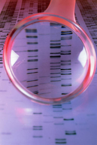 Sequence Photograph - Dna Sequence Magnified By A Magnifying Glass by Sinclair Stammers/science Photo Library