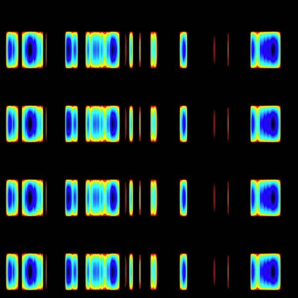 Autoradiogram Photograph - Dna Sequence by Mehau Kulyk
