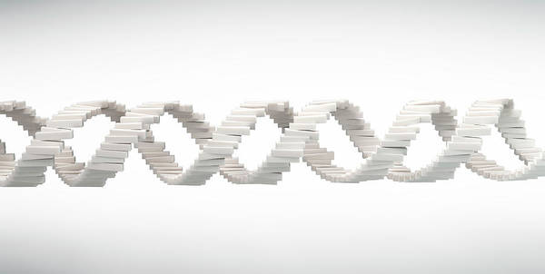 Wall Art - Photograph - Dna Strand by Andrzej Wojcicki/science Photo Library
