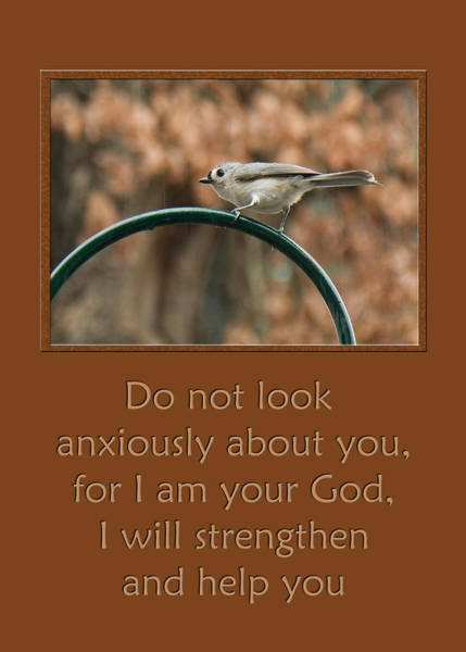 Photograph - Do Not Look Anxiously About You by Denise Beverly